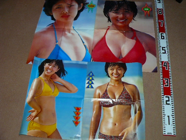 榊原郁恵水着ポスター買取